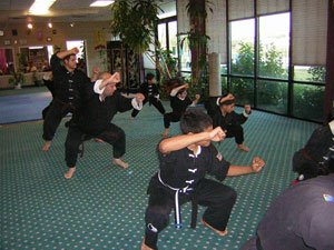 Wang's Martial Arts Kung Fu test picture