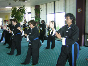 Wang's Martial Arts Tai Chi test picture.